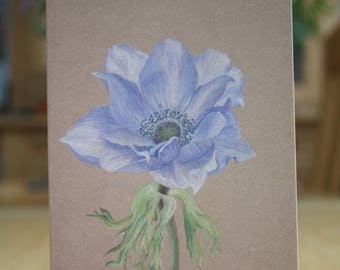 Pack of 5 Anemone greetings cards