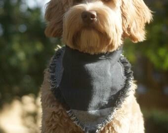 dog bandana - The cuddly curmudgeon