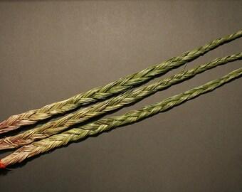 Licorice (Sweet Grass)