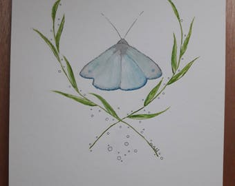 Moth Art Work, Original Art Work, Moth Art, Original Illustration, Original watercolor painting, Gift Idea