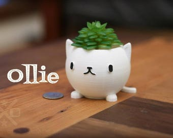 Cat Planter, Kitty Planter, cat lover gift, cute planter, Animal Planter, happy planter, Succulent planters, small plant pots, 3d Printed,