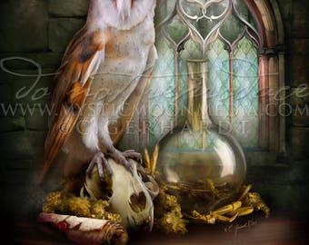 Salazar Slytherin Owl/ Harry Potter Art Print / Hogwarts Founder / House Slytherin/ Harry Potter Gift / Owl Post Slytherin / Nerd Gifts