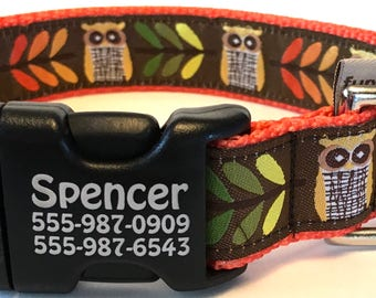 Cute Owls Personalized Identification Buckle No Tags Required Laser Engraved Boy Girl Dog Collar Made in USA You Pick Size