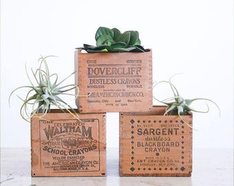 3 Vintage Wood Crayon Boxes / Antique Crayon Box / Waltham Sargent Dovercliff / Instant Collection