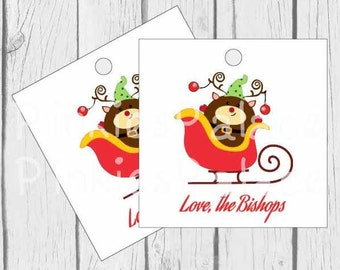 Christmas Tags Reindeer Tags Christmas Sleigh Tags Gift Tags Favor Tags Set of 10 - T611