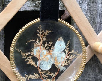 Vintage Butterfly in glass bubble on velvet hanger