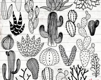 Cactus Clipart - Hand Drawn Cactus Clipart - Vector Cactus Art - Cactus Digital Paper - Cactus Clip Art - Cactus Illustration - ACGABW01