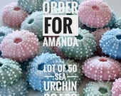 CUSTOM ORDER - Amanda  Lot of 50 Pastel Sea Urchin Soaps - Beach, Soap, Nautical, Beach Wedding, Weddng Favor, Beach Theme, Sea Urchins