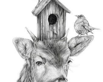 Blackbird King art print illustration bird animal art bird illustration deer drawing
