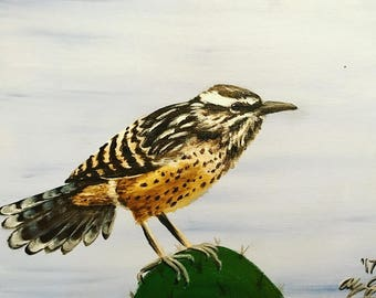 Cactus wren West texas Original painting