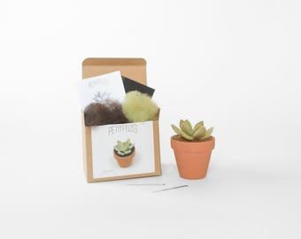 Needle Felting Kit. Succulent Kit. Succulent. Felt Craft Kit. DIY Needle Felting. Craft Gift. Craft Kit.