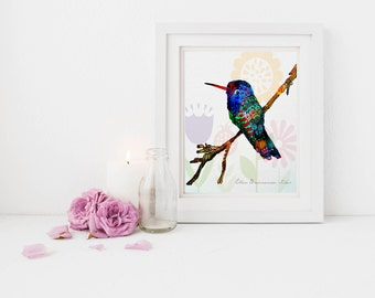 Hummingbird art, hummingbird wall decor, hummingbird painting, backyard bird art print, hummingbird illustration, ellen brenneman
