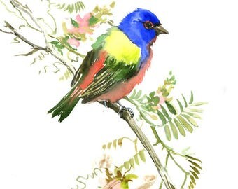 "Painted Bunting bird artwork original one of a kind watercolor painting 12"" X 9"", blue red olive green bird art, birds"