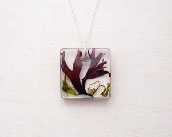 Real Seaweed Pendant - Small Square seaweed necklace - Mermaid Jewellery