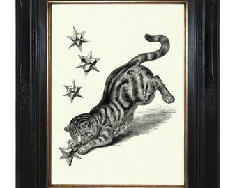 Cat Art Print hunts Geometric Star Shape Form Polyhedron Poster Steampunk Pet Victorian Engraving Surrealism III