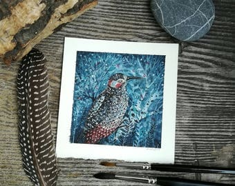 Bird Watercolor Miniature Original Painting - woodpecker  ILLUSTRATION - Fine Art  drawing / home decor / gift idea /  by Nora