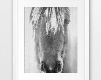 Horse Print, Black And White Horse Wall Art, Wild Horse Print, Icelandic Horse, Wilderness Decor, Equestrian, Modern, Digital Printable Art