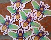 star bee /// illustration sticker