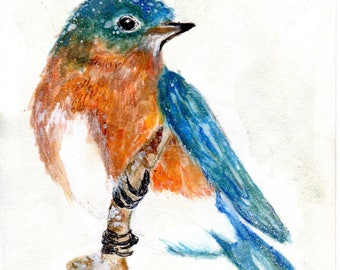 Eastern Bluebird in the snow print from my original painting