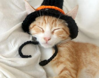 Witch Cat Hat, Witch Hat for Cats, Halloween Cat Costume, Halloween Hat for Cats, Witch Hat for Small Dog, Halloween Pet Hat, Witch Dog Pets