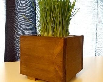 Wood Centerpiece Planter Box