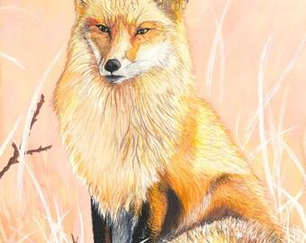 Vigilant Fox Original Watercolor Painting on Arches Paper