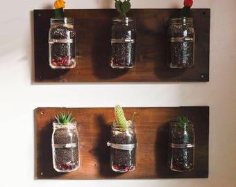 Wall-Mounted Mason Jar Herb/Succulent Garden