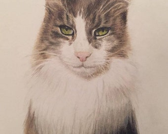 Custom Pet Portrait - A3 Coloured Pencil, Christmas gift, Birthday gift, Personalised gift, Cat Lover, Dog Lover, Animal Lover