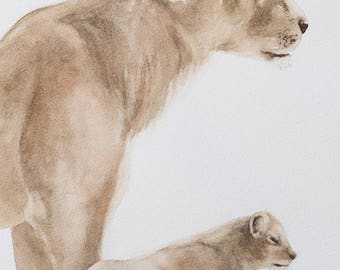 baby lion cub painting nursery art print of lion painting for her for him watercolor peek a boo SEE PHOTOS to view all 15 PRINTS 11x14 New