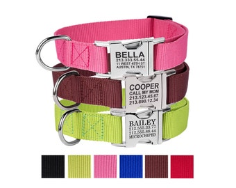 Engraved Buckle Dog Collar Personalized Custom Pink Blue Red Brown