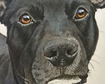 A3 size, Handpainted pet portrait,  custom pet painting
