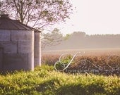 Cotton field grain silos  in South GA, Early Morning, photograph (available on E-Surface Paper, Canvas, or Wrapped Canvas)