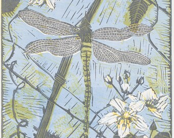 Blank card with image of Dragonfly on Bramble