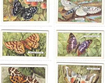 Complete Set of 48x Original Cigarette / Tobacco Cards - 'BUTTERFLIES and MOTHS'  - issued by Gallaher c1938