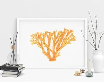 Orange Coral Art Print. Coastal Painting. Beach house. Ocean art print. Sea life illustration. Ocean home decor. Alcohol Ink Print.