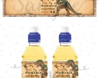 DINOSAURS DRINK WRAPPERS