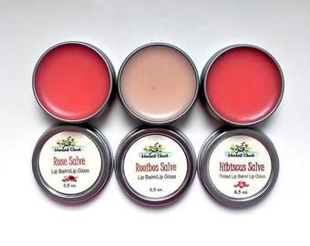 Tinted Lip Balm Set - Lip Tint - Tinted Lip Balm - Lip Balm - Lip Gloss - Lip Butter - Rose Salve - Hibiscus - Rooibos, Lip Balm Favors