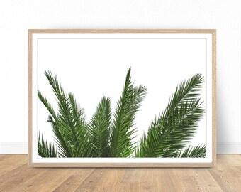 Palm Leaf Print, Palm Tree Print, Tropical Digital Art, Palm Leaf Digital, Green Printable Art, Tropical Wall Art, Palm Poster, Palm Leaves