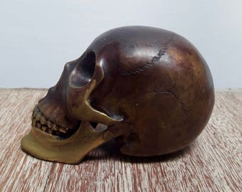 Skull - Antique Brass Gold - Rustic, Gothic, Alternative MEDIUM