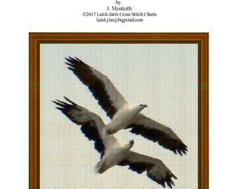 WHITE-Bellied SEA EAGLE - Cross Stitch Chart