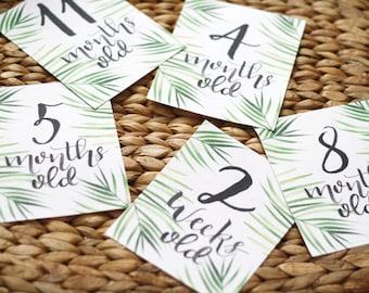Baby Milestone Cards, Calligraphy Milestone Cards, Printable Baby Milestones, Baby Month Signs, Gender Neutral Baby