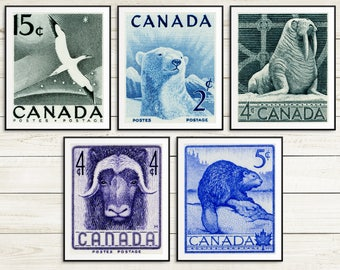 Outdoors gift, canada animal poster set, vintage animal art prints, canadian beaver prints, muskox art, walrus illustrations, polar bear art