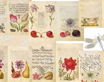 Vintage Scribe & Painter digital journal kit