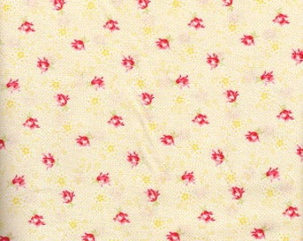 Bonbon Bebe by Robyn Pandolph for RJR Fabrics, Fabric by the yard, 2245-003