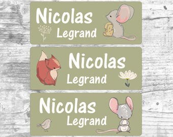 Personalized labels, self-adhesive or heat-sealing , waterproof stickers, clothing, school, first name, re-entry, E001