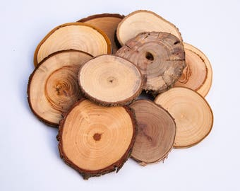 Mixed Wood Slices (10 pack), Wood Slices for sale, Tree Slices, Branch Slices for Craft, Rustic Tree Slices, Wood Slices for Crafts,