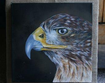 Laneer Eagle - acrylic painting