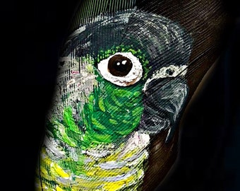 Hand Painted Green Cheek Conure on Feather