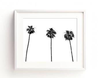 palm tree download, black decor, California art, tropical print, palm tree print, printable artwork, black and white decor, minimalist, dorm