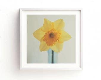 flower print, daffodil print, flower photography, printable art, yellow decor, garden, girls room, printable baby room art, spring decor